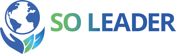 Logo so-leader.com